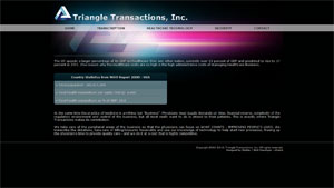 Triangle Transactions Inc.